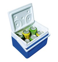 Small cooler 4.7 litres